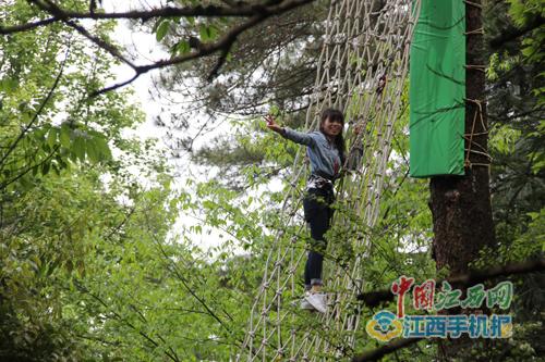 """篁岭又有新玩法 全国手机媒体记者体验""""森林冒险"""""""